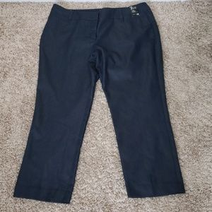 NWT New York & Company sz 16 navy slim ankle pants